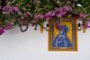 Bougainvillea (Jocelyn777) Tags: bougainvillea foliage walls azulejos ceramictiles bird dove cordoba andalucia spain travel