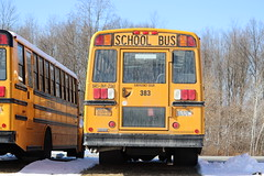 First Student #383 (ThoseGuys119) Tags: firststudentinc schoolbus pinebushny thomasbuilt dslr canon eos77d winter sunlight beautiful snow