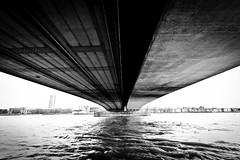 Deutzer Brücke / Deutzer Bridge - Cologne (• See the world with my eyes • olsta.me •) Tags: cologne köln brücken brücke bridge bridges wasser rhein fluss black wihite bw blackwhite schwarzweis