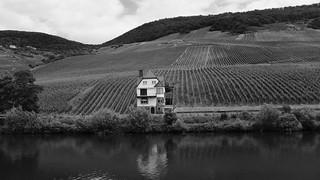 Das Haus am Weinberg an der Mosel