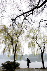 Westlake 西湖 (MelindaChan ^..^) Tags: westlake 西湖 hangzhou china 杭州 people willow tree water lake chanmelmel mel melinda melindachan