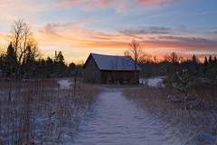 Go Softly (Anvilcloud) Tags: riverwood snow winter sunrise