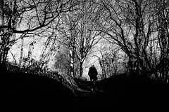 A Tangled Mind (JamieHaugh) Tags: totnes devon england uk gb greatbritain outdoors sony a6000 blackandwhite blackwhite bw monochrome tangled mind nature person lady figure woman trees path