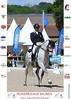 SULTAO MENEZES - H PSL - 2006 (HARAS DE LA GESSE) Tags: cheval horse lusitano lusitanien dressage breed elevage foal poulain pouliche