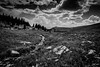 In the Beginning (Kent Copeland) Tags: bnw nature absaroka beartooth cody wyoming unitedstates