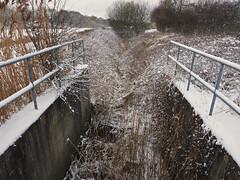 snow and stream (Johnson Cameraface) Tags: 2018 february winter olympus omde1 em1 micro43 mzuiko 1240mm f28 johnsoncameraface snow cold stream concrete brrr