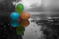 Day 21 of 365 (Christina Draper) Tags: selectivecolour mist greyday sunday balloons 365project 365 green balloon puddle wet snow rain orange blue reflections bokeh air creepy