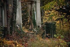 Ruins of King Zog's Estate - Muttontown Preserve (LauraJSwindle) Tags: ny nikond7100 longisland kingzog goldcoastera kingzogsruins kingzogofalbania naturedecay muttontownnaturepreserve mansionestateruins urbex urbandecay wantaghfairfield nyca usa newyork eastcoast foliage flora plants naturepreserve