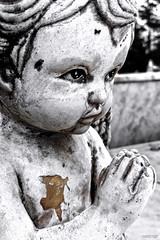 Rezo Perpetuo (Berly Fuster [Theretsuf]) Tags: niño estatua angel rezando blanco negro yeso cementerio boy statue praying white black cast cemetery bambino statua angelo preghiere bianco nero gesso cimitero kevinncajaleon kevin berly fuster theretsuf