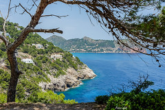 Bay of Canyamel 2 (Peter Goll thx for +6.000.000 views) Tags: 2014 mallorca urlaub erlangen germany