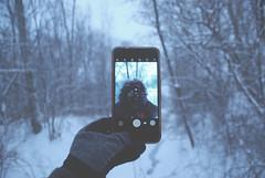 #selfie (Sofeha) Tags: snow canada snowstorm winterstorm storm winter snowing phone flash trees path snowflake snowfalling