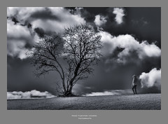 Horizonte roto (Paco Fuentes Vicario) Tags: paisaje almendro nubes clouds landscape cielo arbol hierba árbol bn bw blancoynegro blackandwhite blackwhite horizonte grey horizon paseo perspectiva roto