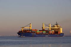 ATLANTIC PROJECT II (angelo vlassenrood) Tags: ship vessel nederland netherlands photo shoot shot photoshot picture westerschelde boot schip canon angelo walsoorden cargo container atlanticprojectii