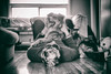 That's the Spot (flashfix) Tags: 2018inphotos ottawa ontario canada nikond7100 40mm nikon flashfix flashfixphotography portrait man male naturallighting dog canine animal pet austrailanshepherd triaustrailanshepherd bluemerle tricolour sock heterochromia monochome blackandwhite octotunes february172018