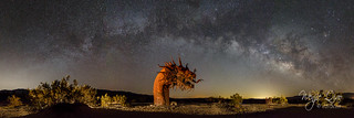 Milky Way Arch over the Dragon