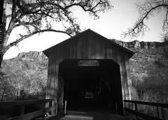 Honey Run Bridge Butte Creek (large Format) (fgmachine) Tags: chicocalifornia buttecreek honeyrunbridge coveredbridge film largeformat speedgraphic sheetfilm rodinal northerncalifornia blackandwhite monochrome 2018