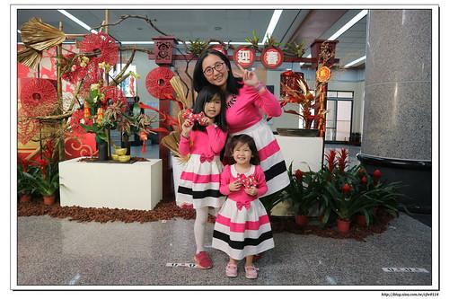 【6Y11M&3Y】港區藝術中心‧春節傳統藝術節X花布狗狗手作