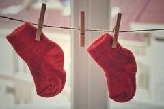2Y 7DWF (raisalachoque) Tags: window closeup red two socks knitting 7dwf