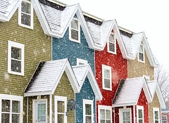 Colour in the Snow (Karen_Chappell) Tags: colourful colours colour color jellybeanrow rowhouse house houses homes red green blue white snow snowy snowing weather stjohns city urban downtown newfoundland nfld canada atlanticcanada avalonpeninsula winter windows