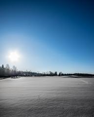 black n white with a blue sky (Mange J) Tags: k3ii clear forrest nature winter sigma1020mmf456exdc sigma pentax blue shadow shadows värmland sweden sverige landscape