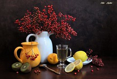 One Day in February (Esther Spektor - Thanks for 12+millions views..) Tags: stilllife naturemorte bodegon naturezamorta stilleben naturamorta composition creativephotography art february winter tabletop bouquet berry food citrus kiwi lemon slice juice pitcher mug plate spoon ceramics glass ambientlight white red yellow green goden brown estherspektor canon coth5