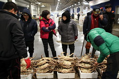 Crab auction (mbphillips) Tags: 한국 韓國 서울 noryangjin 노량진 鷺梁津 fareast asia アジア 아시아 亚洲 亞洲 dongjakgu 동작구 銅雀區 mbphillips canon80d people gente 人 사람들 사람 personas market 市場 市场 시장 mercado korea 韩国 southkorea 대한민국 republicofkorea 大韓民國 geotagged photojournalism photojournalist seoul capital 首都 수도 auction sigma1835mmf18dchsm