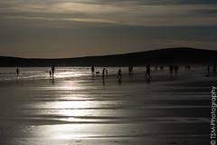 _IMG1620 (blackcloudbrew) Tags: hd55300 pentaxk3 beach bodegabay doranbeach northcoast sonoma sonomacoast sonomacountyparks california unitedstates us