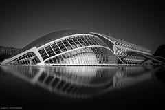 03022018_4920_VLC_CiudadCA (Andrés Gallego) Tags: calatrava ciudaddelasciencias d750 nikon valencia valence city arts sciences symmetry