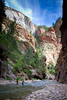 Zion - The Narrows (youcancallmehank) Tags: thenarrows zion arizona