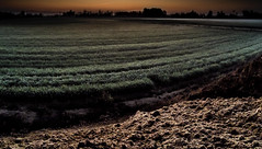 Before the Sun Rises and the Earth Awakens (Andrew Myatt Photo) Tags: nocturnalphotography landscapes field countrylife construction