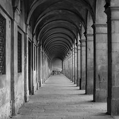 Lucca (Mario Bertocchi) Tags: lucca enza panda bn bw portici galleria mariobertocchi canon explore biancoenero