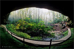 Hazard Cave (Kevin B Photo) Tags: kevinbarry hazardcave pickettstateparktennessee horizontal fisheye boardwalk morning wideangle fog trees south southern usa america day exterior