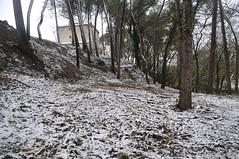 Nevada 2018 (joancristià) Tags: paisstge altpenedès neu paisatge paisaje nieve landscape snow vilafranca penedes