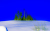 Always looking for light (evakongshavn) Tags: winter winterwonderland winterwald winterlandscape landscapephotography landscape landschaft paysage snow new light white blue green wald forest foret neige serenity tranquilhaven earthnaturelife heaven peaceful bluetiful
