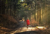 My Heroine - 2018 Edition (der_peste (on/off)) Tags: woman raysoflight raysofgod godrays forest trees woods woodland forestscape walkingwoman redcoat red winter cold mood moody fog mist misty foggy