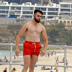 DSCN1555 (danimaniacs) Tags: sydney austrlia bondibeach man guy hot sexy shirtless beard scruff shorts