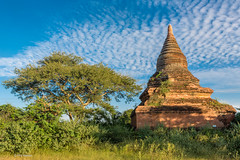 One of the thousand plus Buddhist temples - Plains of Bagan, Myanmar (Phil Marion) Tags: myanmar burma burmese bamar shan mon asian oriental buddhist philmarion travel beautiful cosplay candid beach woman girl boy teen 裸 schlampe 懒妇 나체상 फूहड़ 벌거 벗은 desnudo chubby fat nackt nu निर्वस्त्र 裸体 ヌード नग्न nudo ਨੰਗੀ khỏa جنسي 性感的 malibog セクシー 婚禮 hijab nijab burqa telanjang عري برهنه hot phat nude slim plump tranny cleavage sex slut nipples ass xxx boobs dick tits upskirt naked sexy bondage fuck piercing tattoo dominatrix fetish