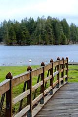 Lake views (briannalhendricks) Tags: canonrebelt6 canonrebel canon dock boardwalk bridge lakelife lake