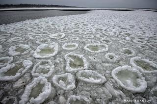 Ice Doughnuts