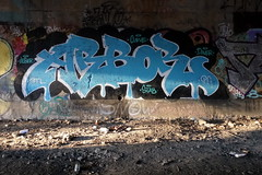 arbor (Luna Park) Tags: ny nyc newyork brooklyn graffiti trackside lunapark arbor