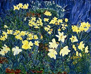 Daffs In June's Garden Fluttering And Dancing In The Breeze