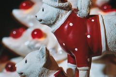 Christmas Cat Stack (Jetcraftsofa) Tags: nikonf3 vivitar5528macro sb23 speedlight portra169 35mm slr filmphotography cats ceramicchristmastree red polkadots flashphotography