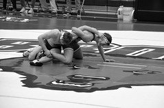 BRO-STA 149 2018-01-13 DSC_8241 bw (bix02138) Tags: brownuniversity brownbears stanforduniversity stanfordcardinal pizzitolasportscenter pizzitolasportscenterbrownuniversity providenceri january13 2018 wrestling sports intercollegiateathletics athletes jocks ©2018lewisbrianday 149pounds 149 zachkrause jakebarry