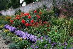 Colclough Walled Garden (Ken Meegan) Tags: colcloughwalledgarden tinternabbey saltmills cowexford ireland 3102015 walledgarden garden