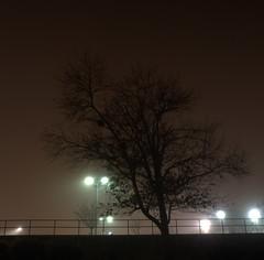 _MG_3251.CR2 (jalexartis) Tags: fayetteville fayettevillenc fayettevillenorthcarolina fog foggy foggymorning downtownfayetteville downtown