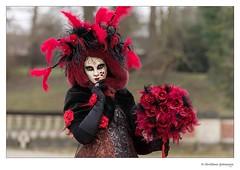 Parade vénitienne.... (crispin52) Tags: paradevénitienne hélécines masks maskers nikon