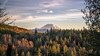 Black Diamond (writing with light 2422 (Not Pro)) Tags: blackdiamond mountrainier volcano stratovolcano sonya7rm3 washingtonstate landscape richborder sunset forest fog trees