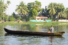 Kerala Backwaters - Morning Canoeist (zorro1945) Tags: alappuzha aleppey kerala india indie asia asie keralabackwaters southindia boat longboat canoeist backwaters river canal house greenhouse palms palmtrees