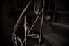 Treppenbogen (Nic2209) Tags: nic2209 nikon nikond750 d750 flickr 2018 flickr2018 ninicrew urbex lost treppe wendeltreppe treppizucci treppen stairporn scala stairs spiralstaircase scalaachiocciola escaliers escalierencolimaçon verfall lostplaces urbanexplorer verkommen alt stillgelegt abandoned ausrangiert decay adandoment desolat verlassen aufgegeben verlaten urbanexploration