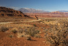 Red Rock & Dust (JasonCameron) Tags: southern utah redrock red rock dirt iron rich soil road drive tour 95 desert mountains mountain geography brush